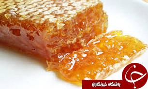 آزمايشگاه مرجع زنبور عسل در كشور راهاندازی خواهد شد