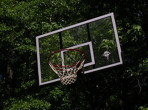 تختهٔ بسکتبال