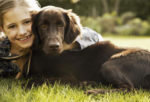 سگهای تشخیص دهنده تشنج