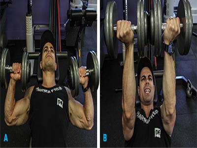حرکاتی برای  پرورش عضلات سینه