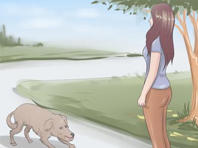 نجات از حمله سگ